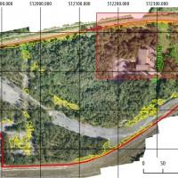 Analiza obszaru występowania roślinności